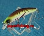Daiwa Dr.Minnow 5F 2.5g 2789